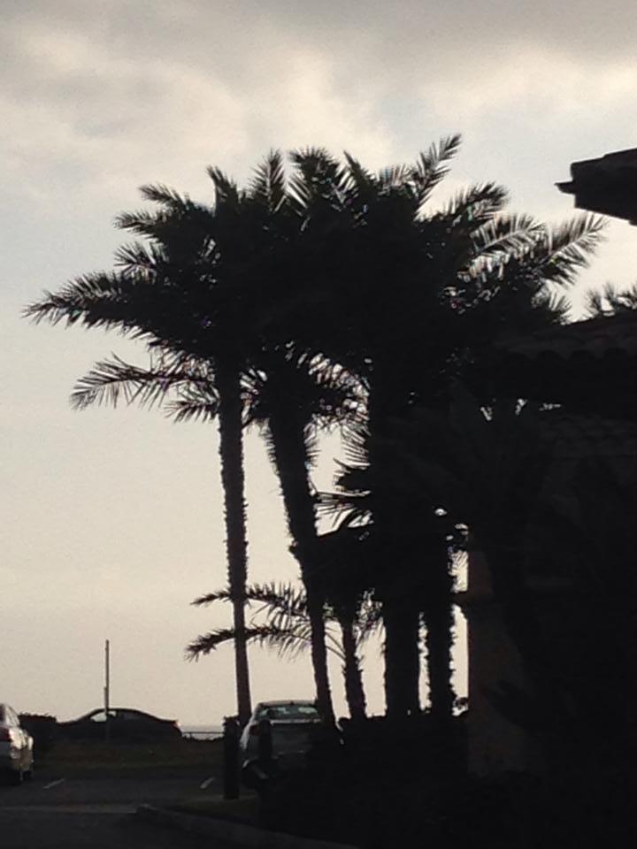 TT_SanDiego_Day3 (4)